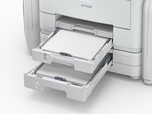 Epson WorkForce Pro WF-R5190DTW (RIPS)